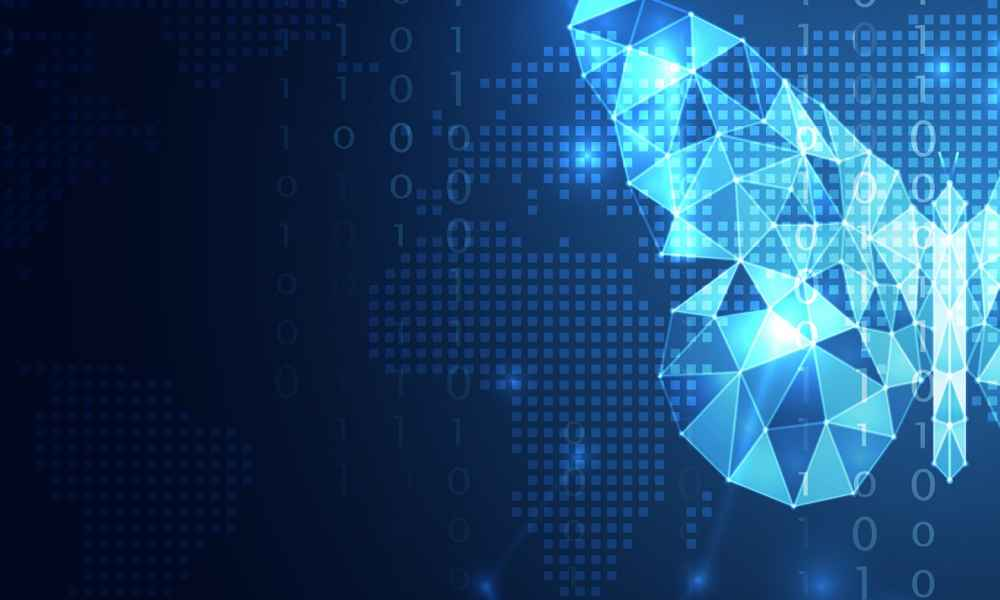 data and digital transformation butterfly