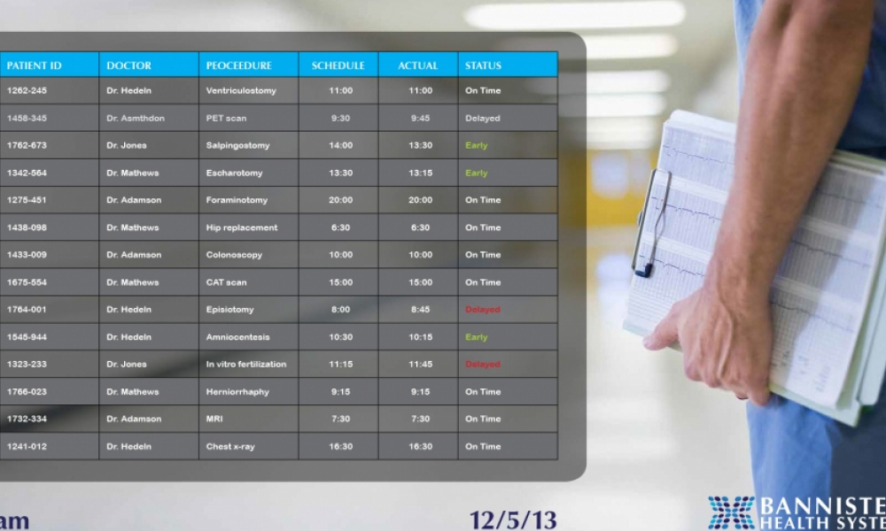 mock landscape patient schedule for healthcare facility