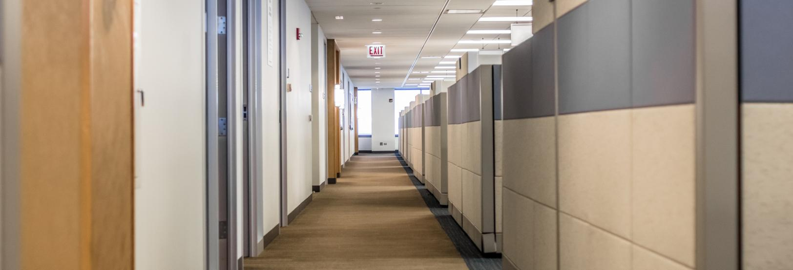 rows of cubicles