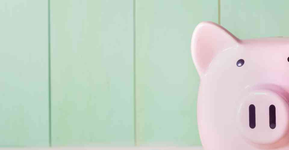 pink piggy bank against green wall
